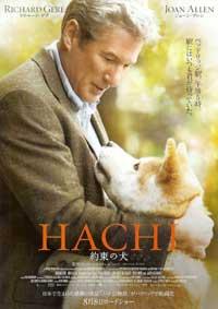 hachi_2.jpg